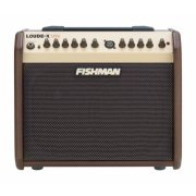 Fishman Pro LBX 500 Loudbox Mini Acoustic Guitar Amplifier