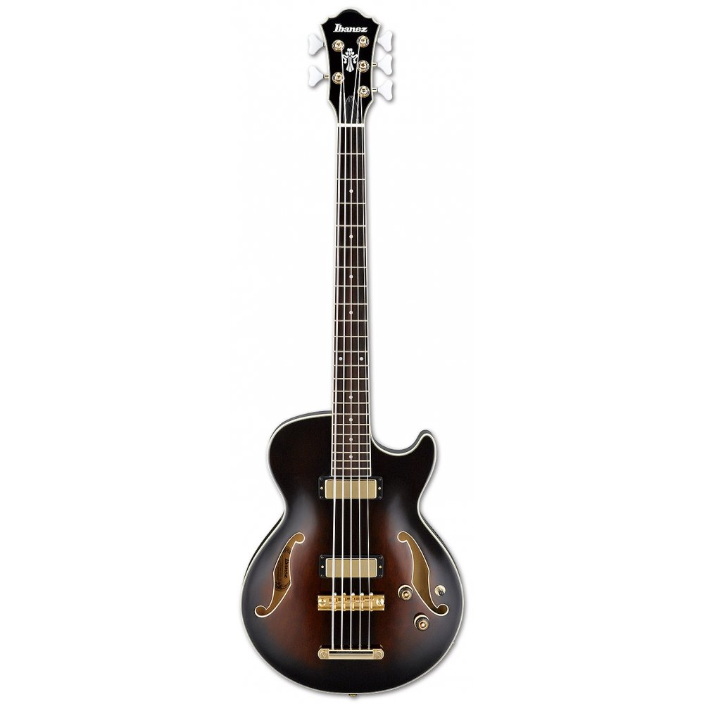 ibanez agb205 5 string bass guitar. Black Bedroom Furniture Sets. Home Design Ideas