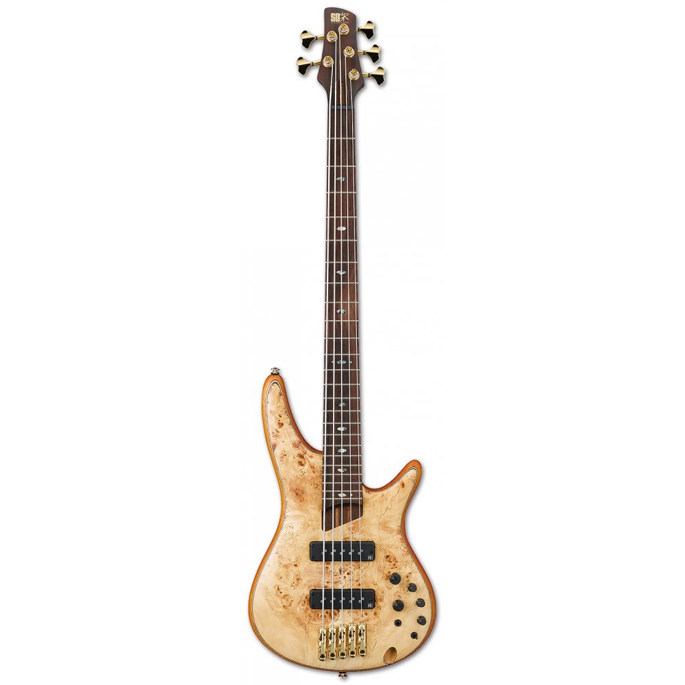 ibanez sr1605 5 string bass guitar. Black Bedroom Furniture Sets. Home Design Ideas