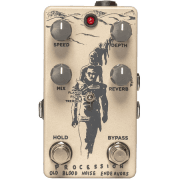 Old Blood Noise Endeavours Procession Reverb